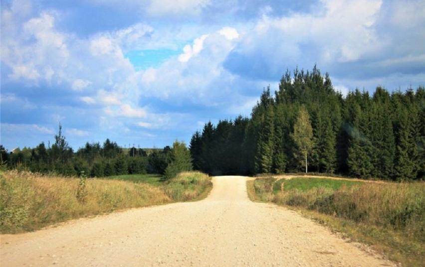 Pasirašytos dar 9 žvyrkelių asfaltavimo darbų sutartys. Yra džiugių naujienų ir rajono gyventojams